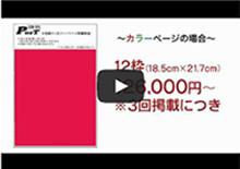 羆�査茯���鴻�  CM13